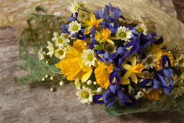 Spring iris narcissus flowers
