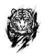 Bengal tiger. Graphic drawing