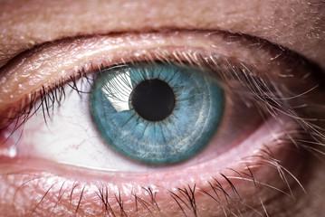 Human blue eye. Macro shooting.