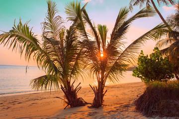 Tropical sunset beach. Thailand, Koh Samui island.