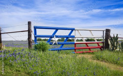 Foto op Canvas Lente Texas bluebonnets along a fence in spring