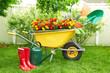 Gardening tools. - 79416114