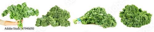 Bundle of curly-leaf kale.