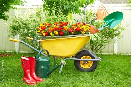 Foto op Canvas Tuin Gardening tools.
