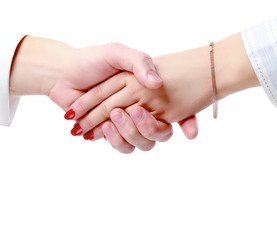 Handshake , isolated on white background