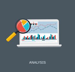 Web Analytics Information and Development Website Statistic