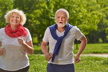 Zwei Senioren laufen im Park Jogging