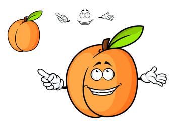 Cartoon juicy apricot fruit