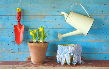 young flower with gardening tools, free copy space