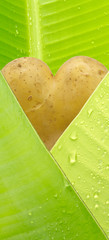 coeur de pomme de terre sous feuille de bananier enveloppe