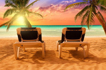 Pair of deck chairs on a tropical beach between coconut palms