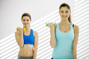 Two young attractive women are doing exercises with dumbbells in