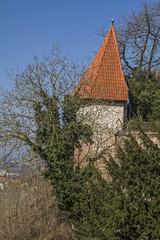 Burg Trausnitzdetail
