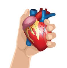 Hand holds heart. Vector illustration