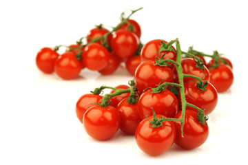 fresh cherry tomatoes on the vine on a white background