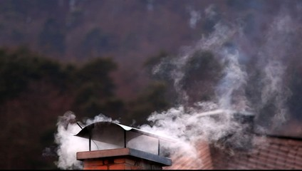 Smoke from a chimney of a residential house in winter