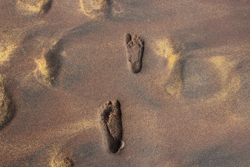 footprints on the golden sand on the beach