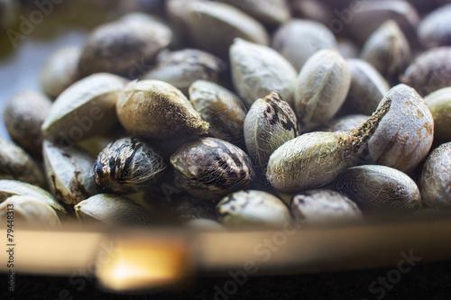 Plexiglas Granen Hemp seeds in a plate with golden edgings