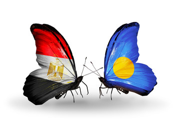 Two butterflies with flags Egypt and Palau