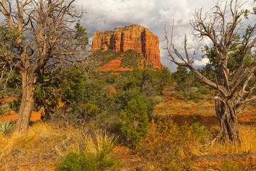 アメリカ アリゾナ州セドナ ヒーリング Sedona vortex of Arizona, the United States