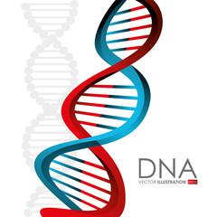 DNA design, vector illustration.