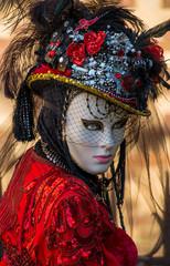 Carnevale di Venezia Maschera 4758