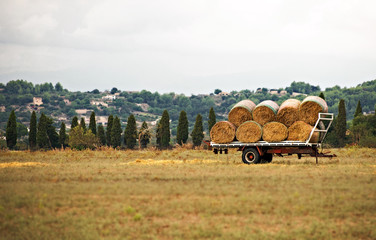Hay wagon on the meadow.