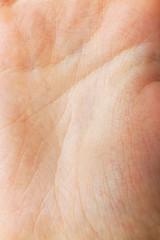 Closeup lines of human hand