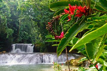 YS-Falls auf Jamaika