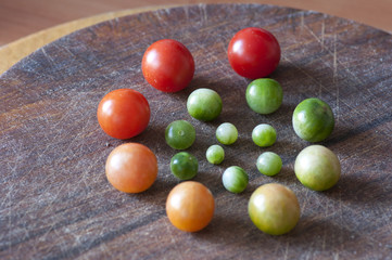 Cherry tomatoes of different ripeness, life cycle