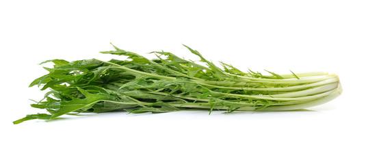 mizuna vegetable on white background