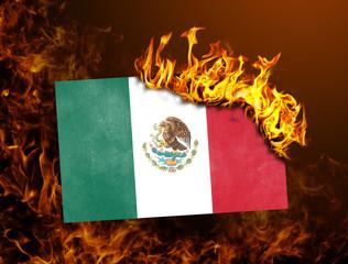Flag burning - Mexico