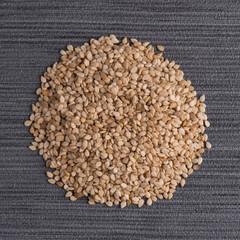 Circle of sesame seeds