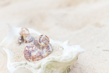 wedding rings on sand and shell, outdorr beach wedding