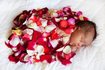 Black baby sleeping covered by rose petals.