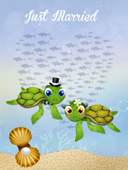 Wedding of sea turtles