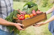 Farmer giving box of veg to customer - 79493138
