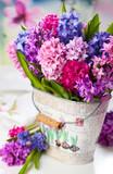 Multicolored hyacinths
