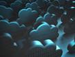 Cloud Computing - 79498116