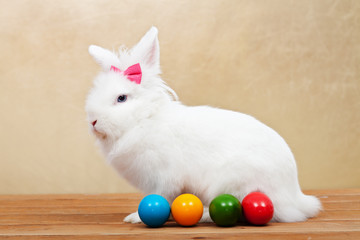 Elegant white rabbit with easter eggs