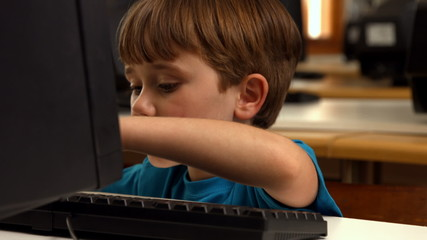 Cute pupil using computer in school