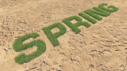 Spring text made from fresh grass among a barren land 3