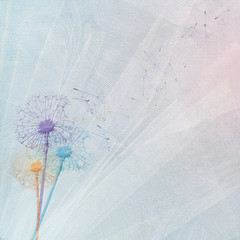 colorful dandelion bouquet on bridal tulle