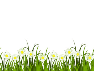 grass and daisies border
