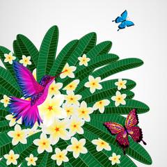Floral design background. Plumeria flowers with bird.