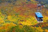 秋の立山ロープウェイ