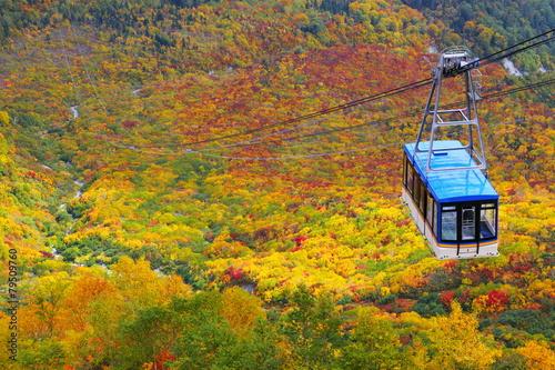 秋の立山ロープウェイ - 79509760