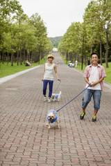 Couple walking two dogs on a paved path.