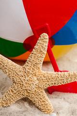 Starfish and beach toys
