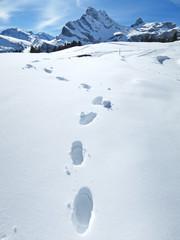 Footprints on the snow